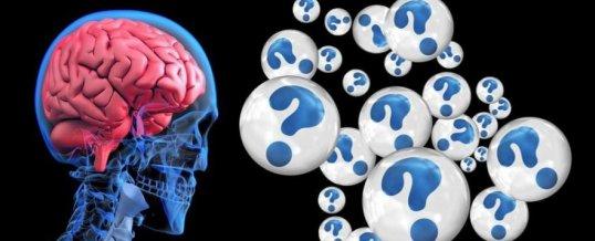 La plasticidad del cerebro
